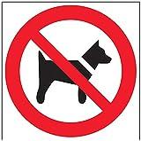 vsafety 51007bg-r prohibición Logo Sign, plástico rígido, no perros, cuadrado, 400mm x 400mm, Negro, Rojo
