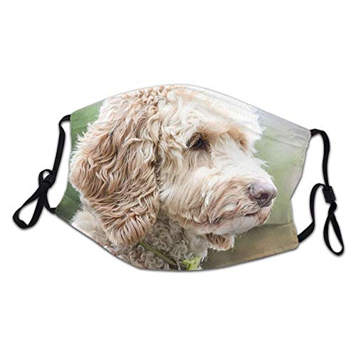 Cute Labradoodle Kids Reusable Mouth Protection Washable Face Masks Child Custom Cover Anti Dust Mask