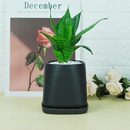 XOSHX keramiek bloempot groot wit porselein bekken nordic mat omgekeerde ladder ronde groene plant pot met chassis