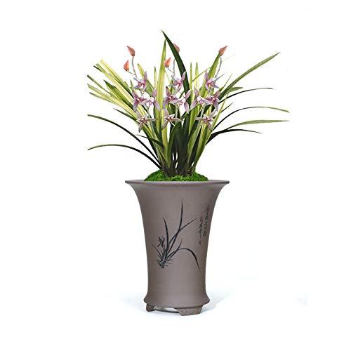 20/x 35/cm 3D Fleurs Artificielles Support mural Cactus Mousse sur la pierre feuilles vert herbe Fleur Rose avec cadre forme vase blanc cadre