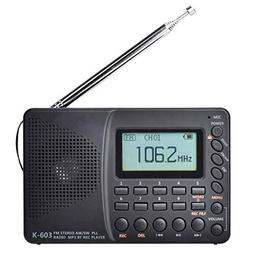 CHYE Mini Radio Portátil Am FM, Radio Portátil De Bolsillo Am/FM/SW Pocket Radio/BT/TF del USB MP3 De La Ayuda Grabadora Digital TF Tarjeta Bluetooth para Los Ancianos