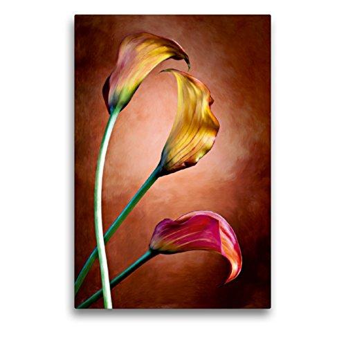 CALVENDO Premium Textil-Leinwand 50 x 75 cm Hoch-Format Zantedeschia Aethiopica, Calla Blumen, Leinwanddruck von Val Thoermer