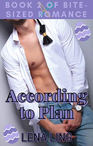 According to Plan (Bite-Sized Romance)