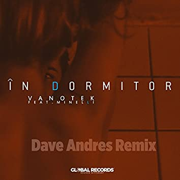 In Dormitor (Dave Andres Remix)