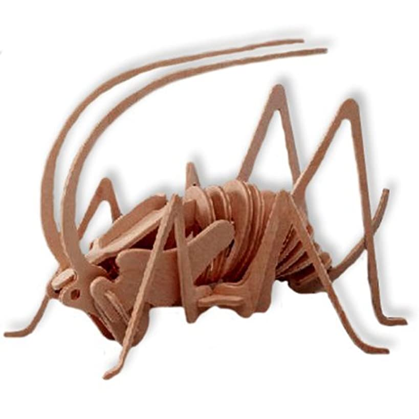 3-D Wooden Puzzle - Cricket -Affordable Gift for your Little One! Item #DCHI-WPZ-E028