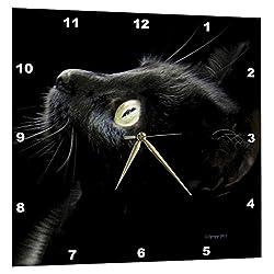3dRose Black Cat Face - Wall Clock, 15 by 15-Inch (DPP_23822_3)