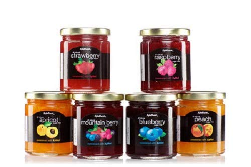 Xyloburst Sugar Free Xylitol Jam Jelly Keto and Diabetic Friendly, Gluten Free, Non - GMO, Vegan 10 Ounce Glass Jar - Made in the USA 6 Pack Variety Flavors - Real Fruit
