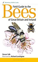 Field Guide to the Bees of Great Britain and Ireland (Bloomsbury Wildlife Guides)