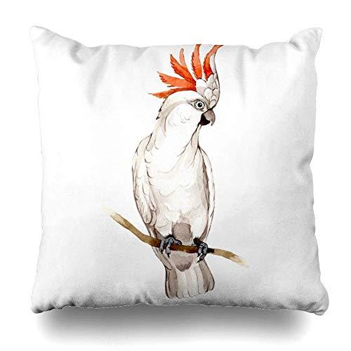 Pillowcase Sky Bird Exotic White Macaw Wildlife vliegen van veren of dieren achtergrond textuur textiel Hawaii in huis decoratieve kussensloop Home Decor kussen ziekenhuis K
