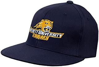 Averett Navy OttoFlex Flat Bill Pro Style Hat 'Averett University Cougars'