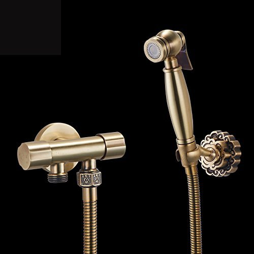 The best quality, bath rooms bidet fitting dual control certain toilet flush bore head sprayer articles of valves brass antique finish