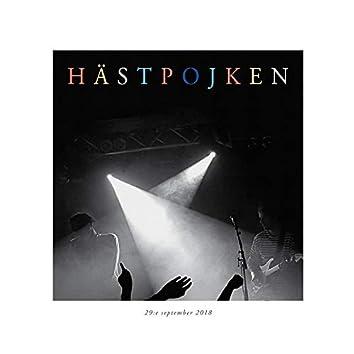 Hästpojken: 29:e September 2018 (Live, 2018)