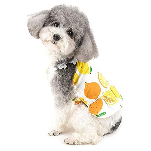 Ranphy Ropa de niña para perros pequeños Chaleco vestido de cachorro princesa vestido de gato camiseta Sundress Doggie sin mangas Tank Top Verano Perrito Camisola Falda Playa Ropa