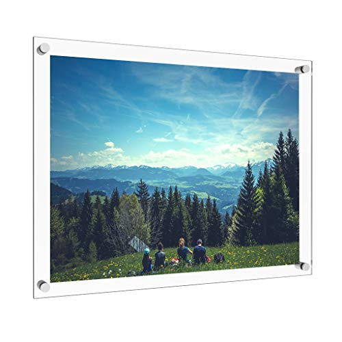Vale Arbor 18 x 24 Acrylic Picture Frame with Brushed Stainless Steel Metal Standoffs
