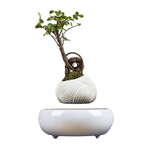 Wisson Levitating Air Plant Pot,Magnetic Levitation Potted Aerial Creative Ornaments,Suspended Ceramics Potted Plant Bonsai For Office,Reception,House