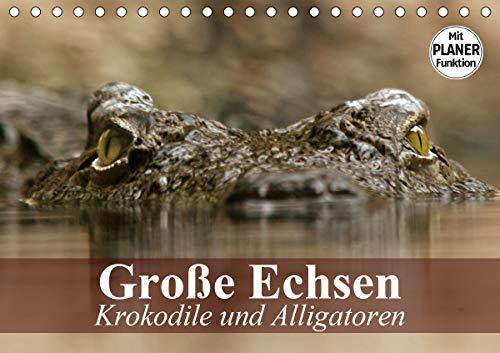 Große Echsen. Krokodile und Alligatoren (Tischkalender 2021 DIN A5 quer)