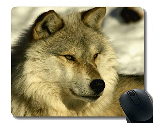 Mouse Pad Non-Skid Natural Rubber Rectangle Mouse Pads,Animal Wolf Navy Mousepad Nonslip Rubber Backing