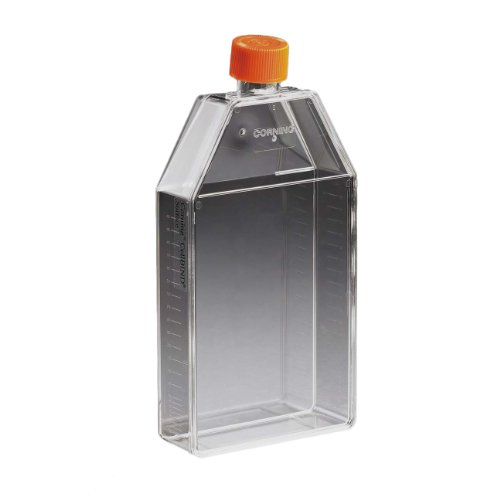Corning 430825 Polystyrene 210mL Rectangular Canted Neck Cell Culture Flask with Orange HDPE Vent Cap (Case of 50)