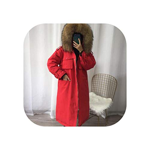 DDDatian Women Coat Natural Raccoon Fur Collar Down Parka Long White Duck Down Jacket,red Coat-Brown Fur,M