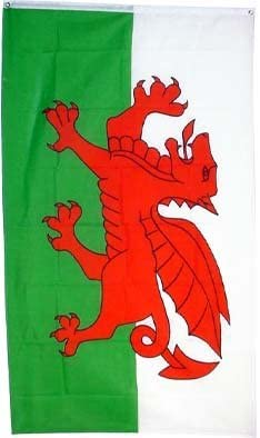 Welsh Dragon Wales Red Black Small 3Ft X 2Ft Flag Banner Party Decoration