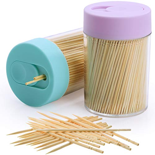 Bamboo Wooden Toothpicks 1000 Pieces Ornate Handle