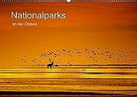 Nationalparks an der Ostsee (Wandkalender 2022 DIN A2 quer): Bilder einer einzigartigen Landschaft in den Jahreszeiten im Nationalpark Vorpommersche Boddenlandschaft und Jasmund (Monatskalender, 14 Seiten )