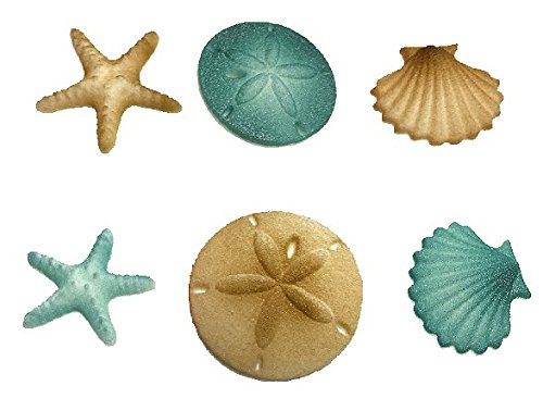 12pk Beach Comber Side Sand Water Sea Creatures Sea Shells Star Fish (Teal) Ready To Use Cake Cupcake Sugar Decoration Toppers