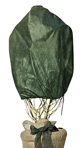 Windhager Rosen-Vlies Haube, Wintervlies-Haube, Thermovlies, Gartenvlies, Kälteschutz für Rosen, 3 Stück, grün, 0,75 x 1 m, 30 g/m², 06726
