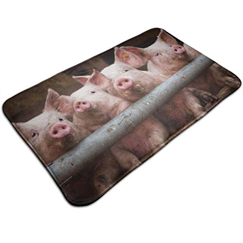 Balance-Life Pig Indoor/Outdoor Flat 40x60cm Made of 100% Polyester Extra Soft and Non Slip Area Rug for Bedroom, Kitchen, Living Room, Office, Playroom-9Y