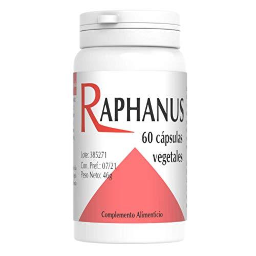Raphanus 60cps