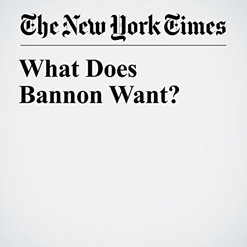 What Does Bannon Want? copertina