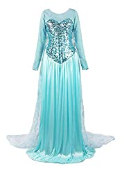 Light Blue Elegent Princess Dress Costume
