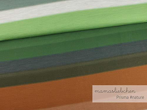 Mamasliebchen Jersey-Stoff Prisma #Nature (0,95m) Farbverlauf Panel