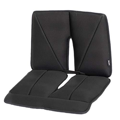 Dr. air Seat Cushion, Non-Slip Orthopedic Lumbar Support Cushion, Back, Sciatica, Coccyx and Tailbone Pain, Wheelchair, Office, Car, Home (Black, Lumbar)