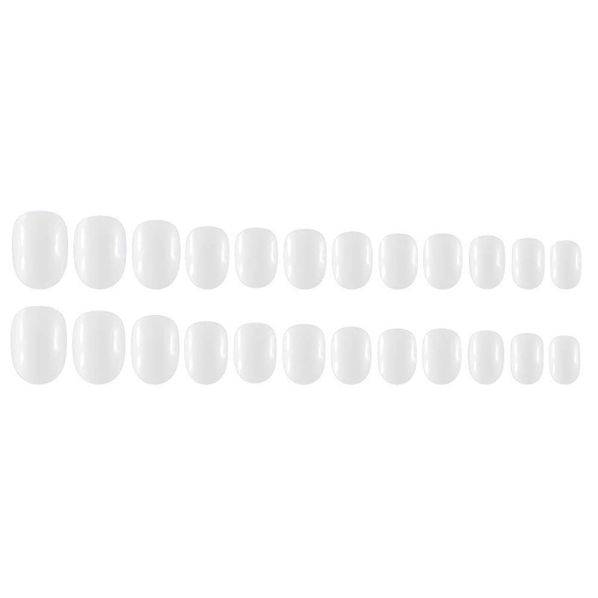 比較長さ毎年Decdeal Decdeal ネイルチップ 24ピース 12異なるサイズ diy サロン ネイルアートツール 偽