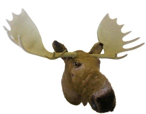 """Deko Elchkopf """"NORDBERT"""" Elch mit Geweih 68 cm x 46 cm traumhafte ELCH MOOSE Atrappe inklusive Elch Schild Moose Sign große wunderschöne Wand Trophäemit Aufhängevorrichtung"""