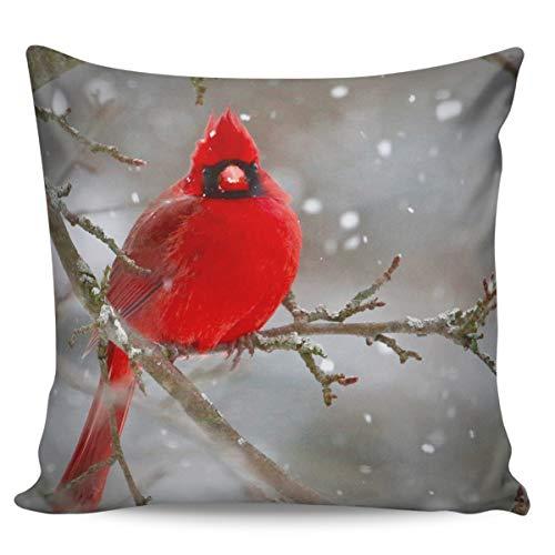 Winter Rangers Fundas de almohada decorativas, diseño de pájaro en una rama, ultra suave, funda de cojín cuadrada cómoda para sofá dormitorio, 61 x 60 cm