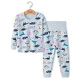Pijamas de Manga Larga para Niños, Morbuy Pijamas Dos Piezas Bebe Niño y Niña Otoño Suave y Cómoda Ropa Algodón Ceñido Mantener Caliente Camisa + Pantalón para 1-5 años (4T - 100cm,Dinosaurio Azul)