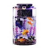 YZERTLH Acuario de los hogares de Escritorio cilíndrico Transparente de Vidrio para Personas perezosas sin Cambiar Agua Ecological Goldfish Tank