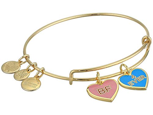Alex and Ani Color Infusion Best Friends Duo Charm Bangle Bracelet Gold One Size, Shiny Gold (A20EBVDAY13SG)