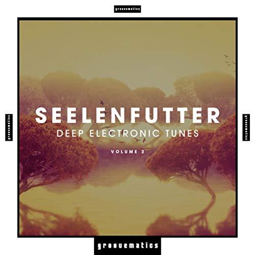 SeelenFutter(Deep Electronic Tunes), Vol. 2