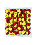 Wilson Starter Orange Tennis Balls, 48-Pack