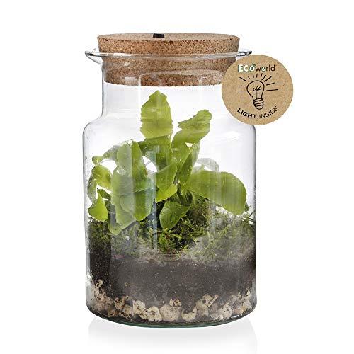 Ecoworld Jungle Corky Glas Ecosysteem Lamp - LED verlichting - Ø 13 cm ? 20 cm