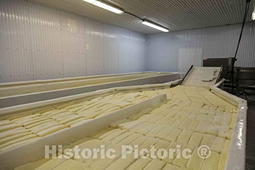 Historic Pictoric Photo - Workers at The Old Country Cheese Plant in Cashton, Wisconsin, Make Large Bricks of mild, semi-Soft muenster Cheese from Milk Supplied by Nearby Amish Farmers 24in x 16in