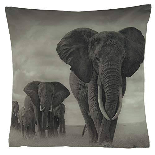 Kissenhüllen Kissenbezug 40x40 Kissen Dekokissen Kuschelkissen Tiermotive (Animal Afrika Elefanten)