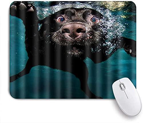 HARXISE Alfombrilla Gaming,Popular Divertido Perro Labrador Encantador buceando en el Agua,con Base de Goma Antideslizante,240×200×3mm