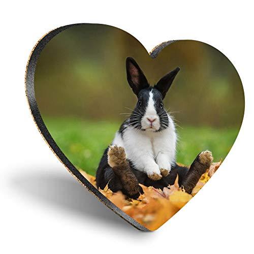 Posavasos con forma de corazón de MDF, color blanco y negro con animales de conejo, para mascotas y mascotas, con calidad brillante, protección de mesa para cualquier tipo de mesa #8704