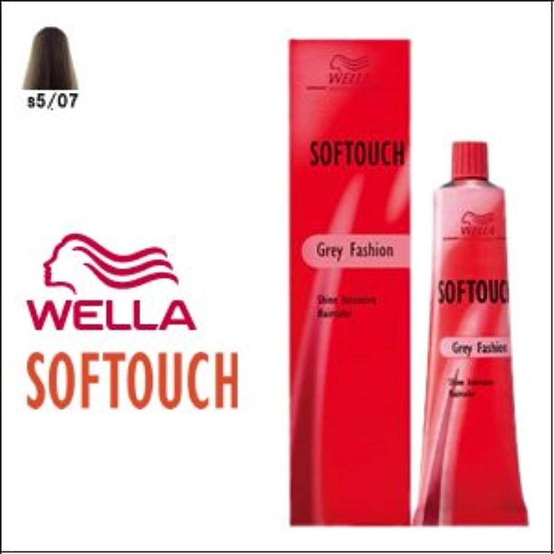 推定乱れ液化するウエラ ヘアカラー ソフタッチ S5/07 60g