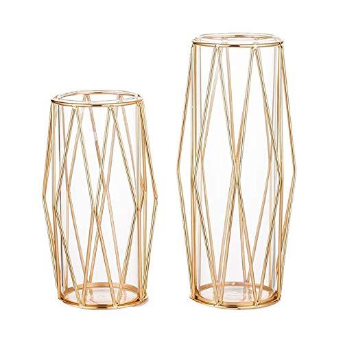 Kirmax Klar Glas Vasen mit Eisen Rahmen, Blumen Vase, Pflanzen Ausstellungs Halter, für Tisch Dekoration, Gold, 11 Zoll und 8,5 Zoll