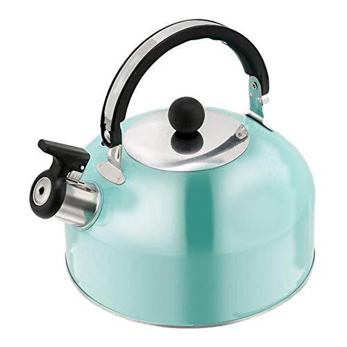 YMYGCC Fluitketel 1 stuk 3 l theeketel kookpijp pijp theepot roestvrij staal thee ketel thee potten voor oven top voor…